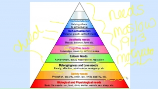 Maslow's Hierarchy of Needs- Part 1