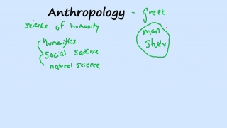Anthropology and Museums