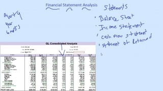 Analyzing Financial Statments