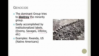 Sociology Lesson 22- Patterns of Dominant Groups