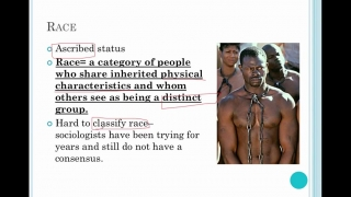Sociology Lesson 25- Race, Ethnicity and the Social Structure