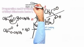 Organic Practical_ Preparation & Purification of an Ester.