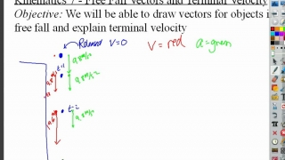 Kinematics: Free Fall Vectors & Terminal Velocity