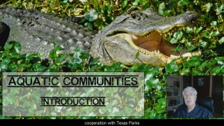 Community Intro - Aquatic Science with Dr. Rudy Rosen 5.2