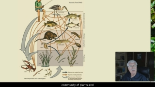 Food Chain - Aquatic Science with Dr. Rudy Rosen 5.7